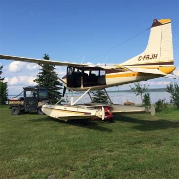 1964 CESSNA 185 for sale - AircraftDealer.com