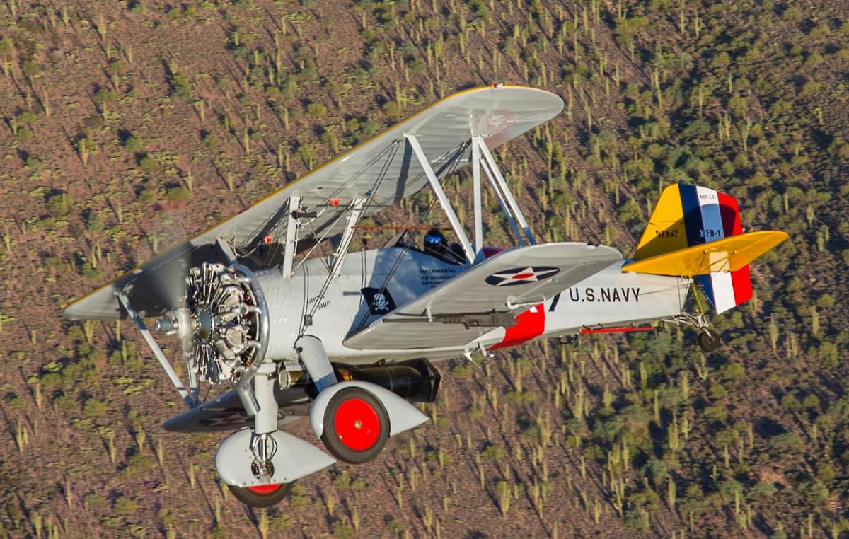 2010 Curtiss Aircraft F11C-2 Photo 2
