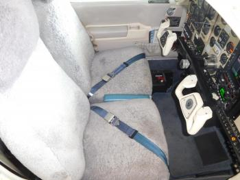 1990 BEECHCRAFT F33A BONANZA - Photo 2