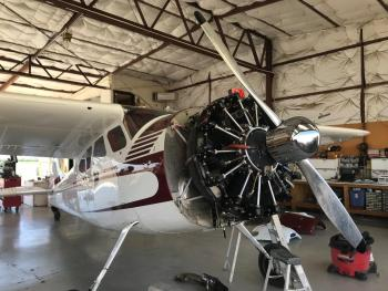 1952 CESSNA 195  for sale - AircraftDealer.com