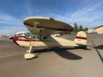 CESSNA 140 for sale - AircraftDealer.com