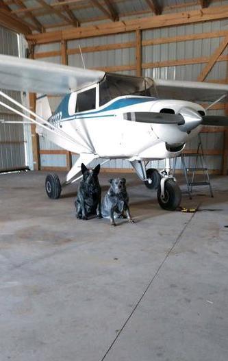1962 PIPER COLT for sale - AircraftDealer.com