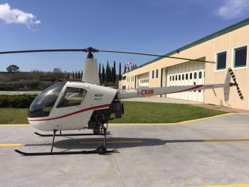 2008 ROBINSON R22 BETA II for sale - AircraftDealer.com