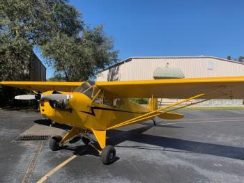 Piper Cub Aircraft for Sale | AircraftDealer com