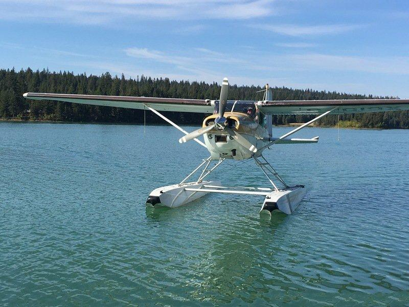 1981 Cessna A185F - Photo 1