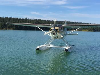 1981 Cessna A185F for sale - AircraftDealer.com