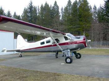 1950 DeHavilland Beaver for sale - AircraftDealer.com