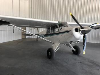 1996 Aviat Aircraft A-1 - Photo 2
