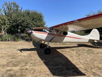 1952 Cessna 170B for sale - AircraftDealer.com