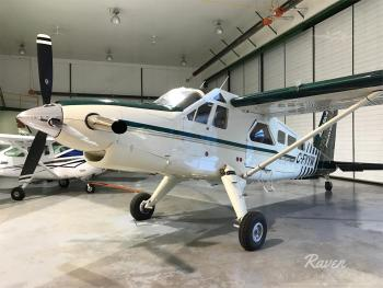 1967 DEHAVILLAND DHC-2T for sale - AircraftDealer.com