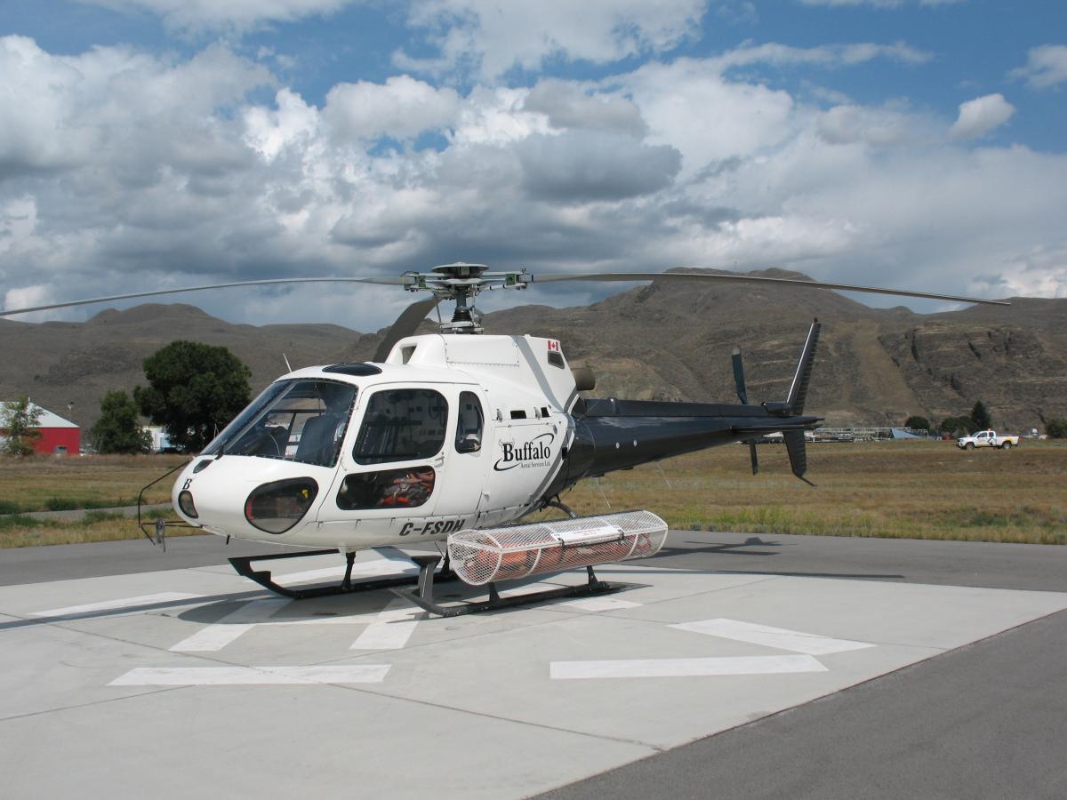 1985 Eurocopter AS350BA Photo 3