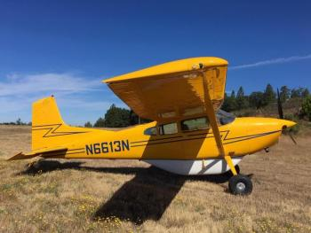 1981 Cessna A185F Skywagon II - Photo 3