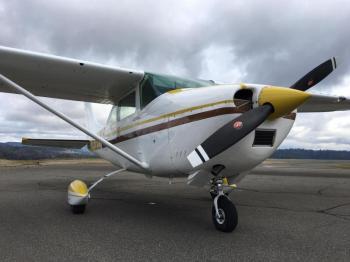 1965 Cessna 182H Skylane - Photo 3
