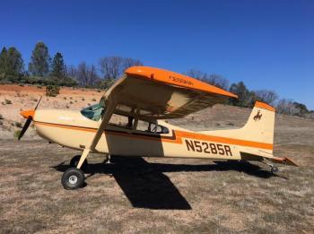 1976 Cessna 185F Skywagon for sale - AircraftDealer.com